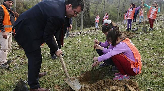 Atakum'da ağaçlandırma