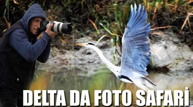 Deltada foto safari