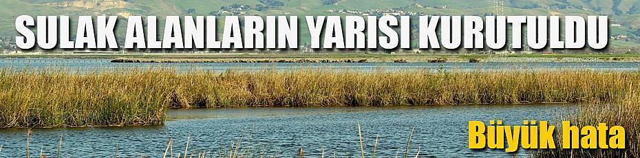 Türkiye'de ihmal sonucu sulak alanlar yok edildi