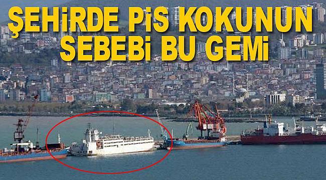 Samsun'da denizden koku şehri sardı