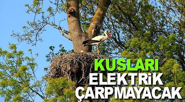 Artık deltada kuşları elektrik çarpmayacak
