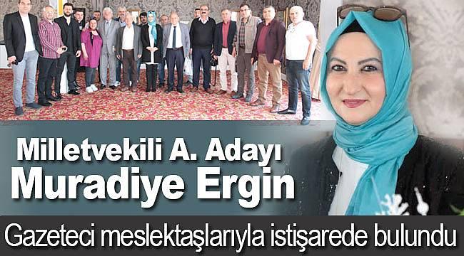 Milletvekili adayı Ergin, meslektaşlarıyla buluştu