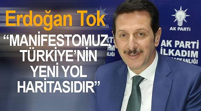 """Tok, """"Manifestomuz, Türkiye'nin yeni yol haritasıdır"""""""