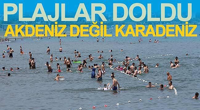Karadeniz sahilleri doldu taştı