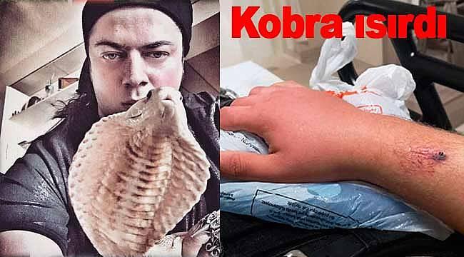 Aref'i kobra ısırdı panzehiri Türkiye'de yok