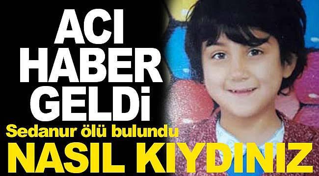 Kayıp Sedanur cinayet sonrası üzeri taşla örtülmüş bulundu