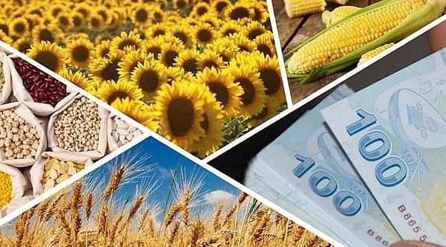 Yağlı tohum fark ödemesi, hububat, baklagil ve dane mısır desteği ödeniyor
